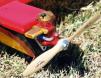Powder-coated Fox 35 (with custom engine mount)on Rusty Brown's Flying Maniac