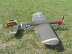 Sandberg P-40